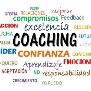 Coaching, Optare Training & Coaching